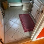 mold water remediation